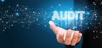 IT Auditing – Planning the IT Audit - Cyber Experts